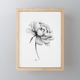 Peony Flower, Black and White Framed Mini Art Print