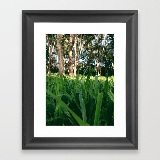 Bed of Grass Framed Art Print