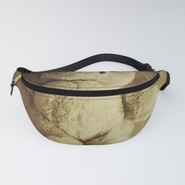 Old Teddy Bear Fanny Pack