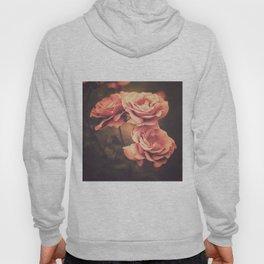 Three Pink Roses (Vintage Flower Photography) Hoody