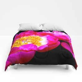 Spring Peonies  Comforters