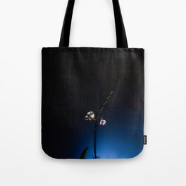 Orchid on Blue Background Tote Bag