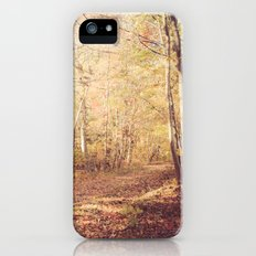 New England Autumn iPhone (5, 5s) Slim Case