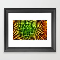 Sunflower Seeds Framed Art Print