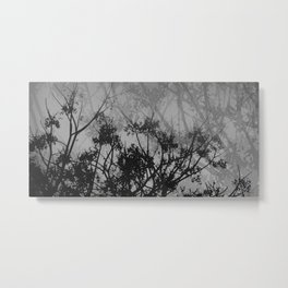 Branches in the Sky Metal Print