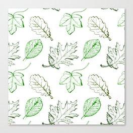Leaves (greens) Canvas Print