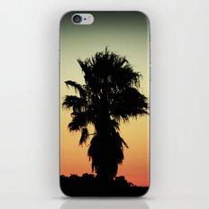 Palm Silhouette iPhone & iPod Skin