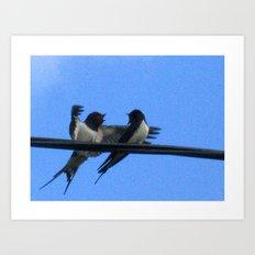Sullu (swallows) Art Print