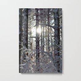 Sunny New England Winter Metal Print