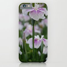 Standing out from the crowd- Purple and White Iris Flowers Slim Case iPhone 6s