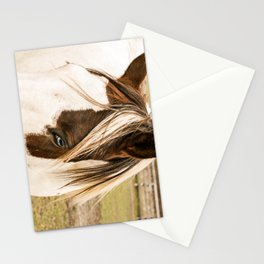 White Face Stationery Cards