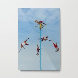 Flying artist collection _02 Metal Print