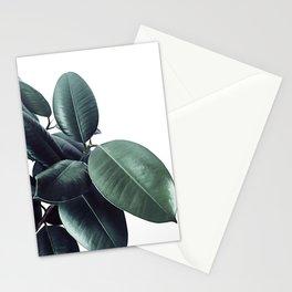 Ficus Elastica #18 #White #foliage #decor #art #society6 Stationery Cards
