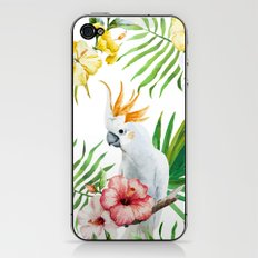 Tropical Bird Pattern 03 iPhone & iPod Skin