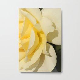 Good afternoon Rose  Metal Print