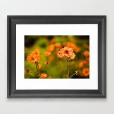 Wild Free Spirit Framed Art Print