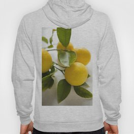 Branch of Lemons Hoody