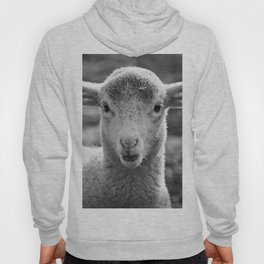 Lamb's portrait Hoody