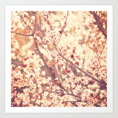 Oh to be a Bumblebee No.3. cherry blossom tree photograph Art Print