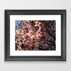Partially Pink Framed Art Print