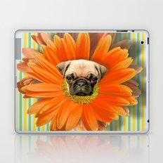 Pistil Pug Laptop & iPad Skin