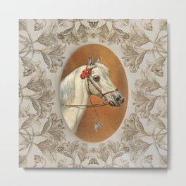 Arabian Horse portrait Metal Print