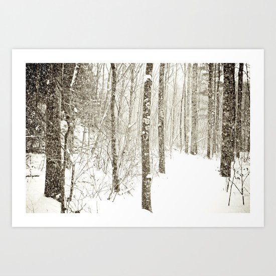 Wintry Mix Art Print