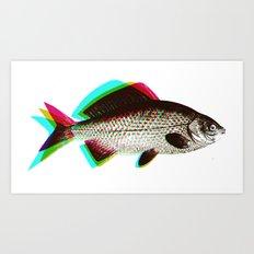 fish + fish + fish Art Print