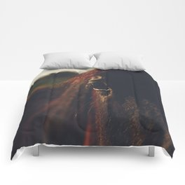 Horse photography, high quality, nature landscape fine art print Comforters