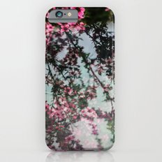 Pink Blossoms iPhone 6s Slim Case