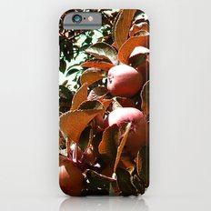 Apple Season  Slim Case iPhone 6s