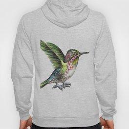 Hummingbird with big foots Hoody
