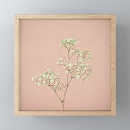 Baby's Breath Framed Mini Art Print