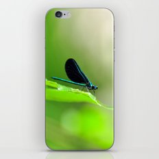 Blue Damsel and the Lime Green Sky iPhone & iPod Skin
