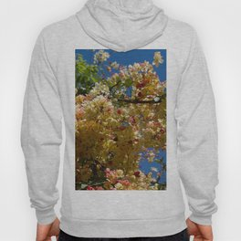 Wilhelmina Tenney Rainbow Shower Tree Hoody
