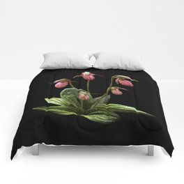 Pink Lady's slipper clump Comforters