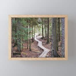Duckboards to deep forest Framed Mini Art Print