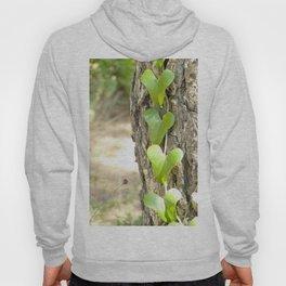 Heart tree Hoody