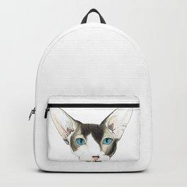 Hairless Cat Backpack