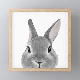 Netherland Dwarf rabbit Grey, illustration original painting print Framed Mini Art Print