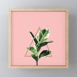 Ficus Elastica Geo Finesse #1 #tropical #foliage #decor #art #society6 Framed Mini Art Print