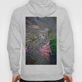 color explotion #2 Hoody