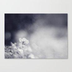 Meadow Cranesbill Canvas Print