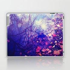 Winter Reflection Laptop & iPad Skin