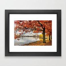 Fall in Boston, MA Framed Art Print