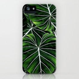 Don't go into the forest iPhone Case