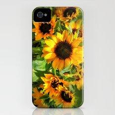 sunflowers Slim Case iPhone (4, 4s)