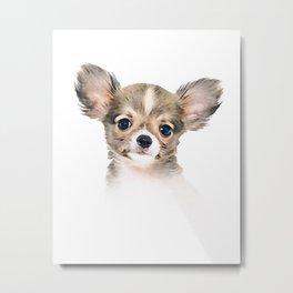Cute Chihuahua Puppy Metal Print