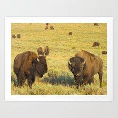 Buffalo Soldiers Art Print