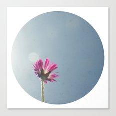 Pink flower circle print Canvas Print